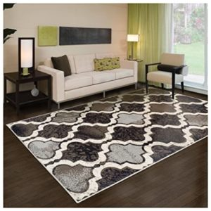 Huge Area Rugs for Living Room: Amazon.com | living room 8x10 rug