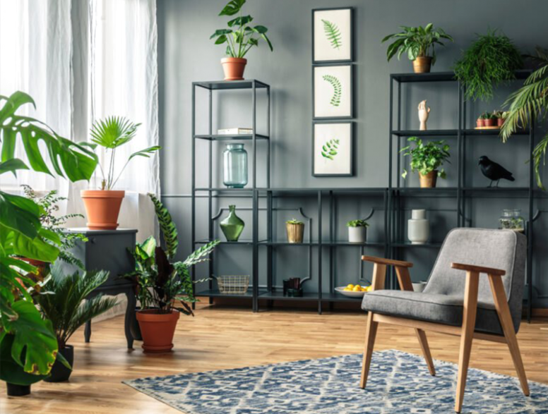 Ideas to Decorate Indoor Plants in your Living Room - RooHome - living room plants | living room plants