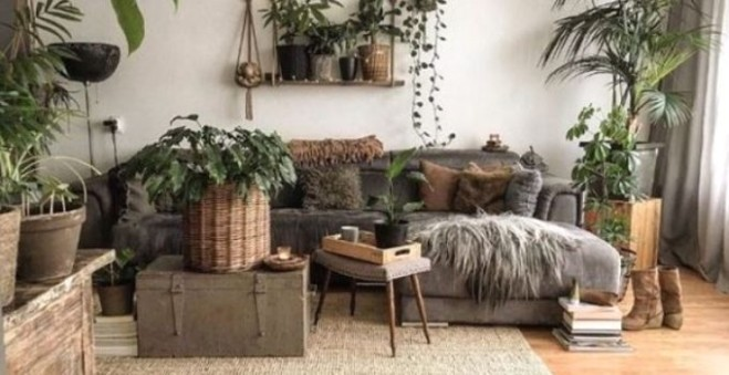 Living Room Plants Ideas: 14+ Fresh and Chic Decors You Will Adore | living room plants