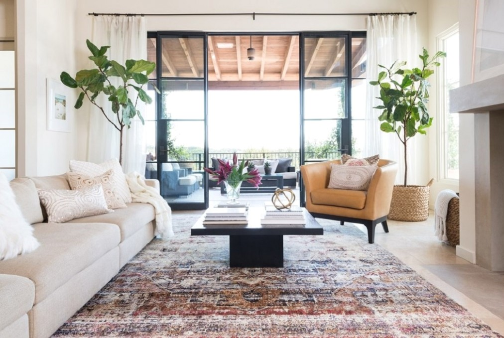 Rug Ideas for Living Room: Oushak Rugs - living room rug ideas | living room rug ideas