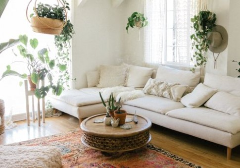 The 14 Best Tall Indoor Plants - living room plants | living room plants