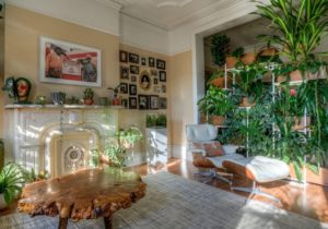 14 Excellent Ideas To Display Living Room Indoor Plants – living room plants