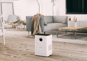 20 Best Humidifier and Air Purifier Combos Reviewed in Detail (Apr ..
