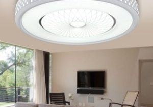 AUGIENB AUGIENB LED Round Flush Mount Pendant Ceiling Light Fixtures  Clearance for Home Kitchen Bathroom Bedroom Living Room Lighting from  Novashion | ..