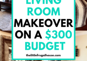 Living Room Makeover on a Budget – The Little Frugal House – living room makeover