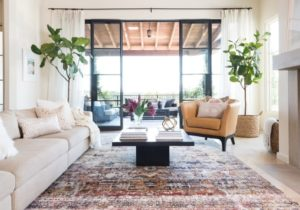Rug Ideas for Living Room: Oushak Rugs – living room rug ideas